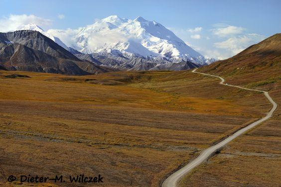 Mt. McKinley / Denali Nat'l. Park / Interior Alaska