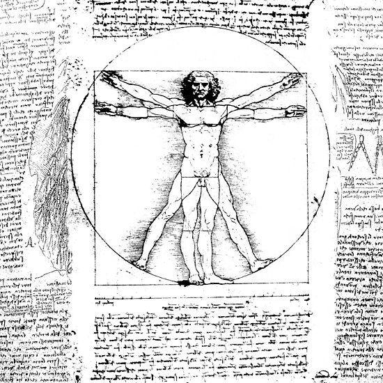 White Graphics /& More Art Paintings-Leonardo Da Vinci The Vitruvian Man