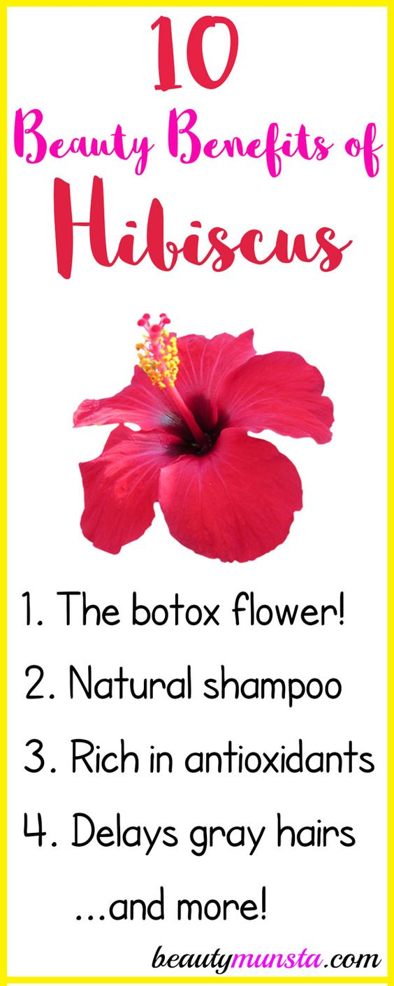 10 Stunning Beauty Benefits Of Hibiscus Beautymunsta Free Natural Beauty Hacks And More Hair Remedies For Growth Hibiscus Natural Beauty Tips
