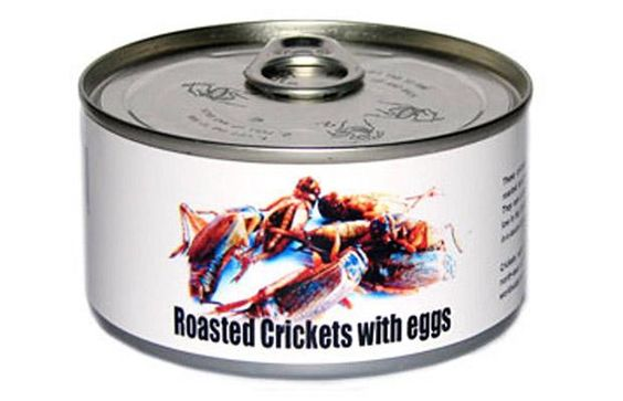 Roasted Crickets with eggs.  With eggs?! AWESOME!!