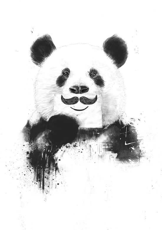 funny panda mustache cool awesome art illustration print poster banner animal black and white awesome black white