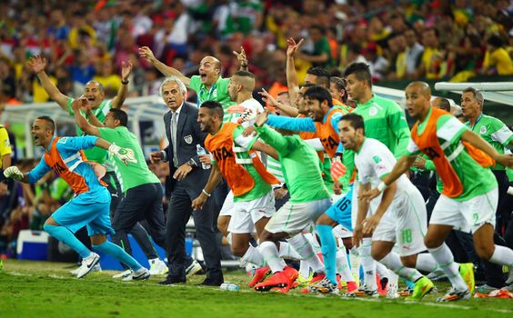 Algeria celebrates after their 1-1 draw vs. Russia allowed them to move on into the round of 16.