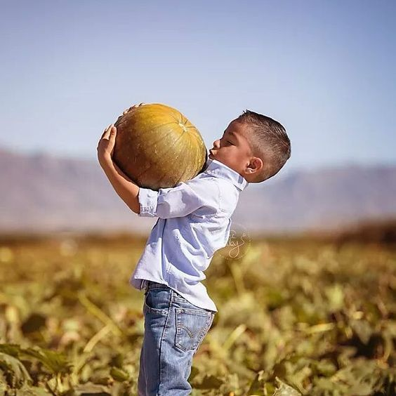 When it's almost toooooo big ... lol.  #tararubyphotography #elpaso #elpasophotographer #child #childphotography #childphotographer #blmommymagazine #bumpsocietymember #napcp #withmytamron #teamcanon #pumpkinpatch