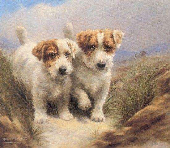 beaux chiens en peintures