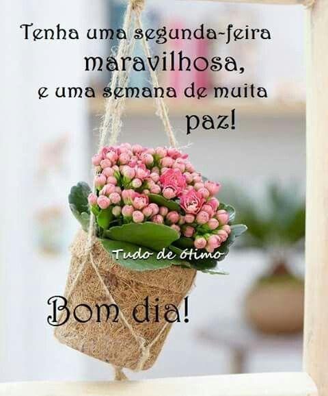Bete G Pereira Com Imagens Frases De Bom Dia Promessas De