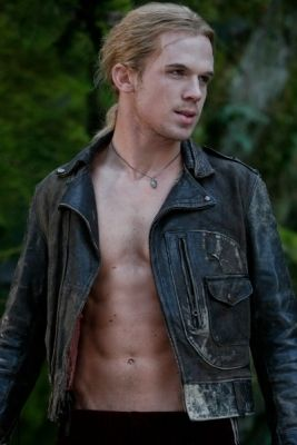 Cam Gigandet as James in Twilight. I have a thing for sexy vampires :-P