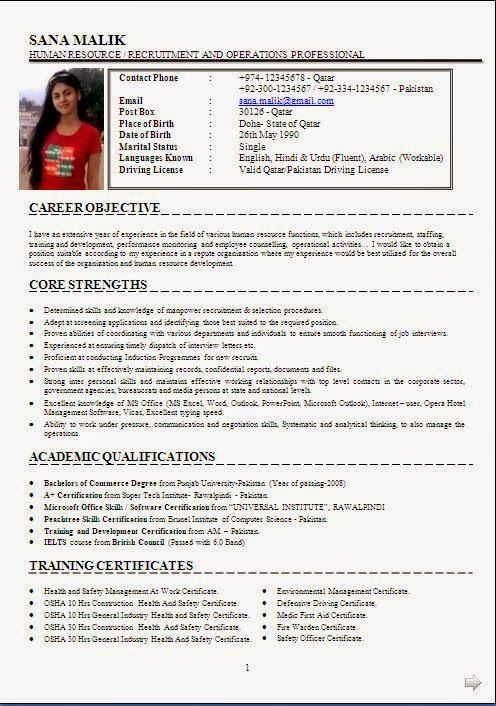 Resume Examples Resume Examples Essay Writing Help Best Essay Writing Service