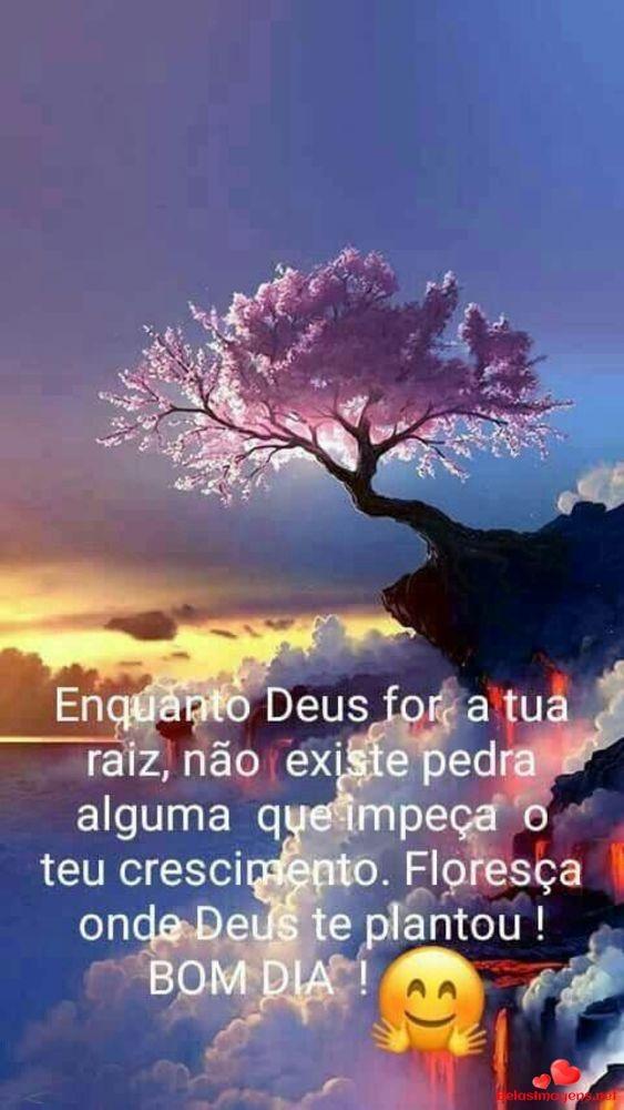 Imagens Bom Dia Baixar Bom Dia Paisagem Mensagens De Deus