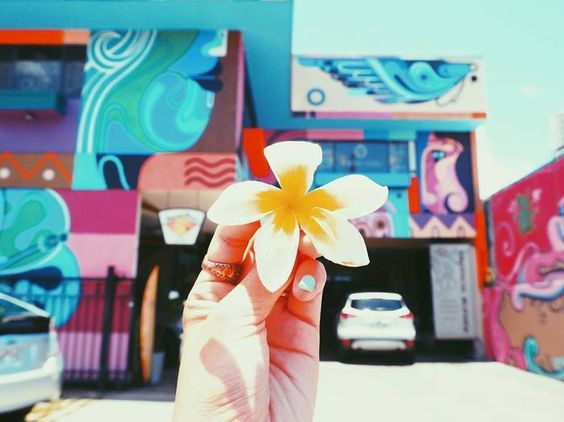 ハワイのアートと花