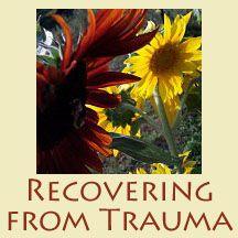 Asheville Trauma and PTSD Therapist – Trauma and PTSD Therapist Asheville, Buncombe County, North Carolina (NC) – Trauma and PTSD Counseling Asheville