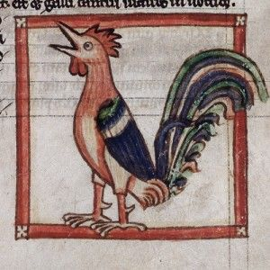 Poultry and Predators in Two Poems From the Reign of Charlemagne - Medievalists.net: