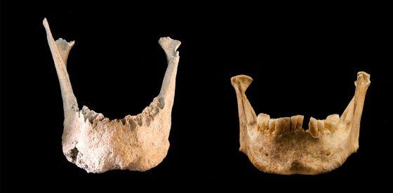 Un gigante vivió hace 1.000 años en al-Ándalus | Ciencia | EL PAÍS