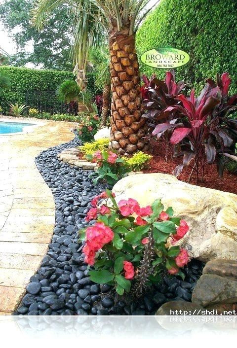 Tropical Landscape Ideas Around Pool Design Pictures Remodel And