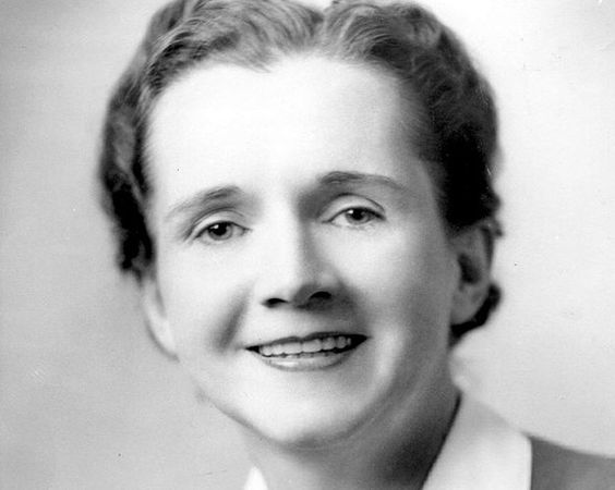 Rachel Louise: Nacida en Pensilvania en 1907, destacó como escritora científica por sus artículos sobre conservación y recursos naturales, que se centraron en el uso excesivo de pesticidas tras la Segunda Guerra Mundial, cuyas consecuencias persisten aún hoy día.