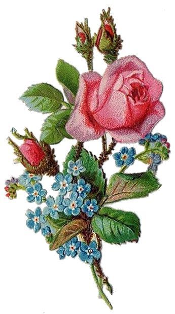 Free freebie printable vintage diecut scrap pink Rose & forget me nots: