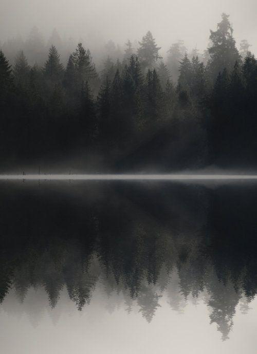 Non Aveva Mai Visto Il Lago In Quelle Ore Del Mattino E Sembrava Tutto Molto Misterioso Una Calma Irreale Nature Photography Landscape Landscape Photography