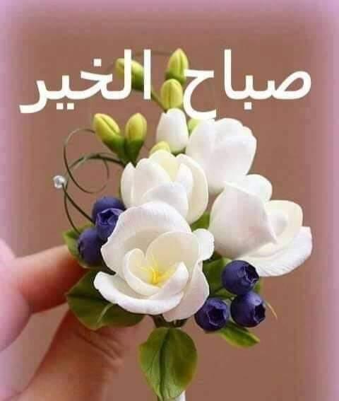 مرحبا بكم صباح الخير والسعادة والبركة Greetings Flowers Good Morning