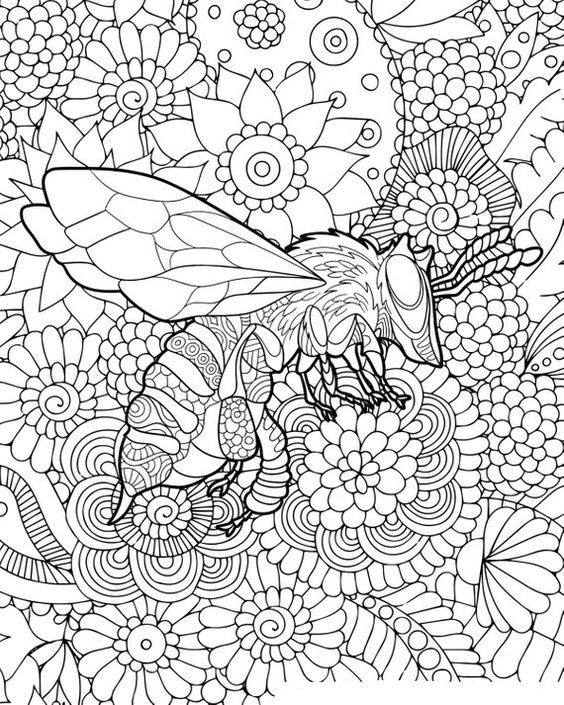 Little Bee Coloring Books