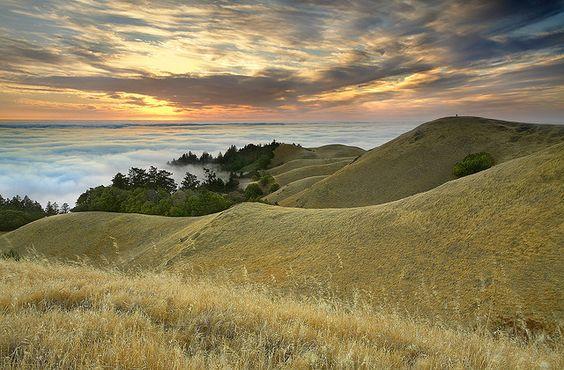 The Photographers - Marin County, California by PatrickSmithPhotography, via Flickr