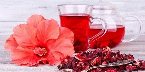 8 причин начать пить чай каркаде — Интересные факты