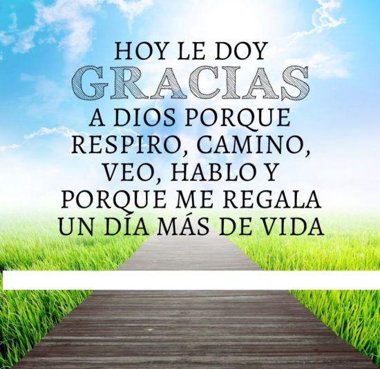 Imágenes De Agradecimiento Con Frases Palabras Y Mensajes Para Decir Gracias Positivity Spiritual Journey Gods Timing