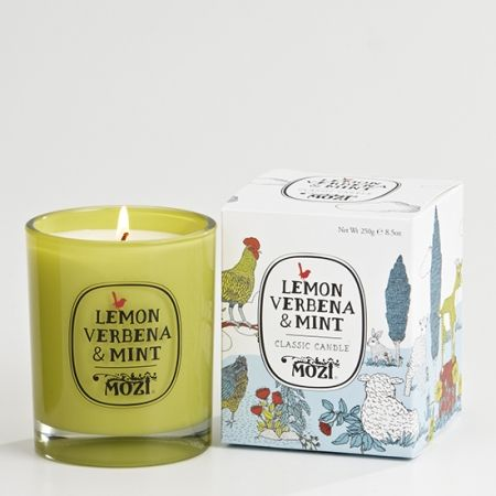 Lemon Verbena And Mint Tisane Recipe — Dishmaps