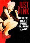 Just Pink Acoustic - Koblenz - 16.11.2014
