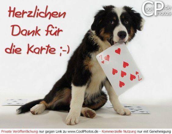 https://www.coolphotos.de/phps/ecard3.php?kategorie=danke_lustig