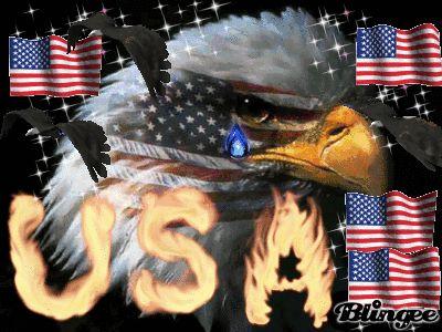 Risultati immagini per eagle crying
