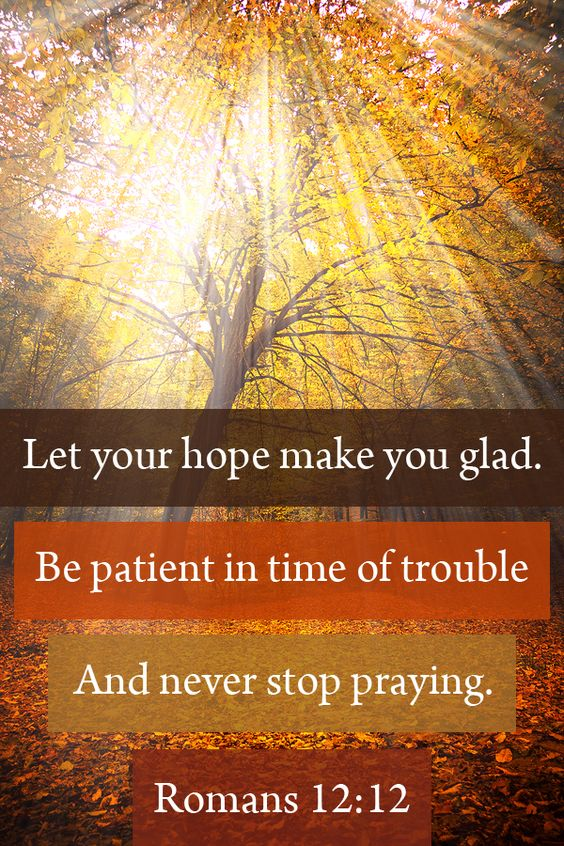"""""""Let your hope make you glad. Be patient in time of trouble. And never stop praying"""" Romans 12:12  #scripture  #prayer"""