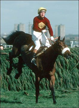 The undisputed King of the National. Between 1973 and 1977 Red Rum won 3 times and was runner up twice!