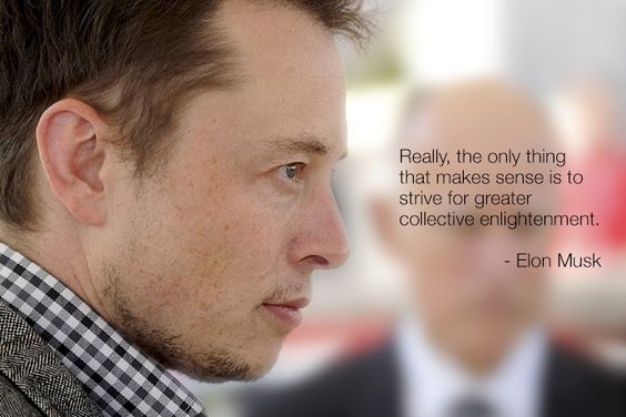 Elon Enthusiast: The Life and Times of Elon Musk : Photo
