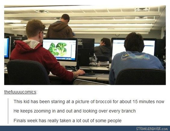 funny tumblr post random humor pinterest funny