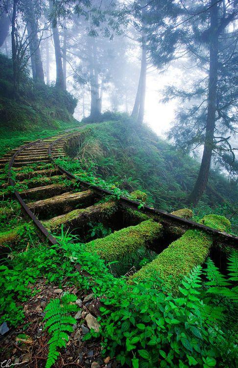 Abandoned railway: