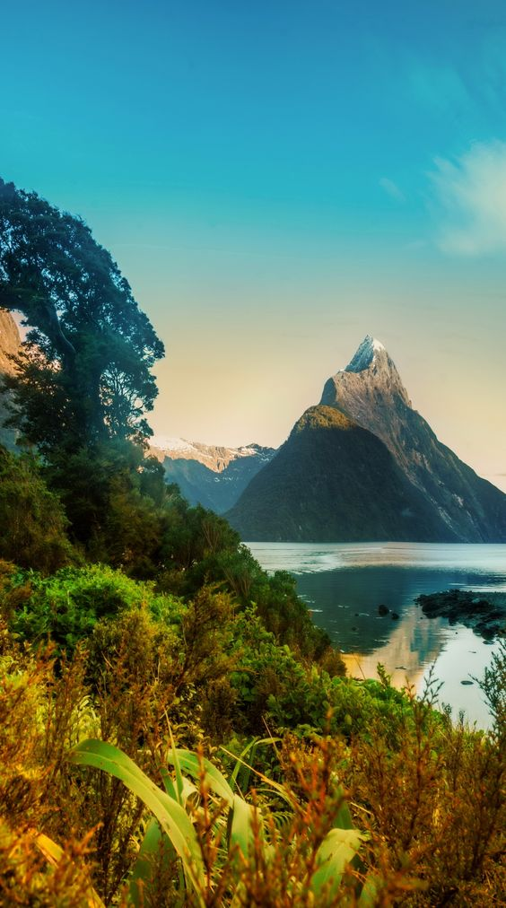 Scenery New Zealand Milford Sound: