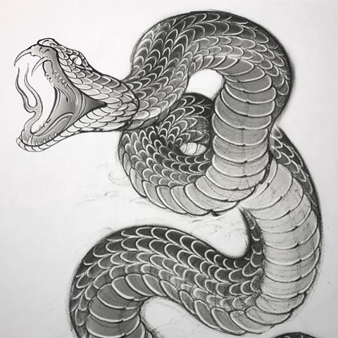 Schlange Rosa Blume Tattoo Tattoo Schlange 13