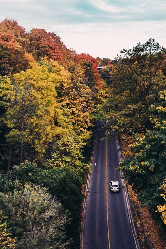 9 Unforgettable Fall Trips in the U.S. - We get it – leaving home is hard when crisp temps and brief daylight hours make you want to curl up in a duvet cocoon for hours on end. Sadly, fall is fleeting, so to make the most of it, we've come up with 9 trips that are totally worth leaving bed for.