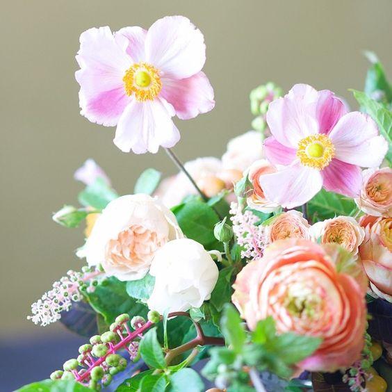 Japanese Anemones. tulipinadesign's photo on Instagram