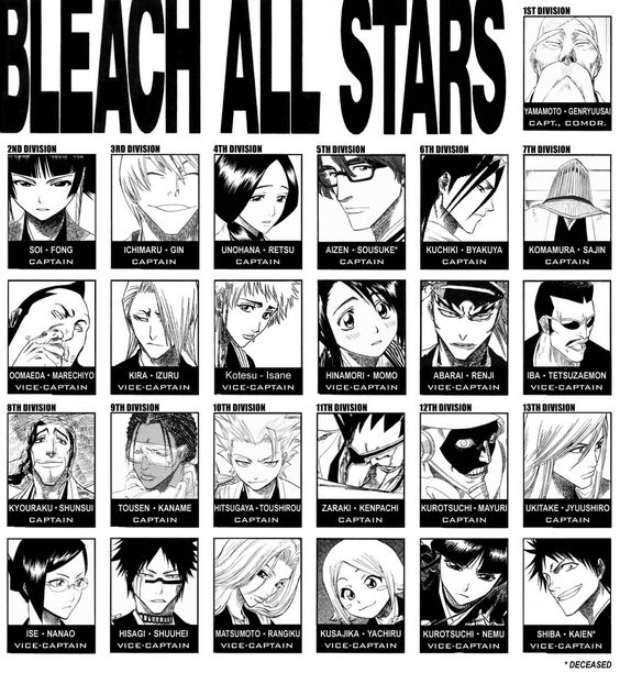 The Bleach Captains And Lieutenants From All 13 Divisions