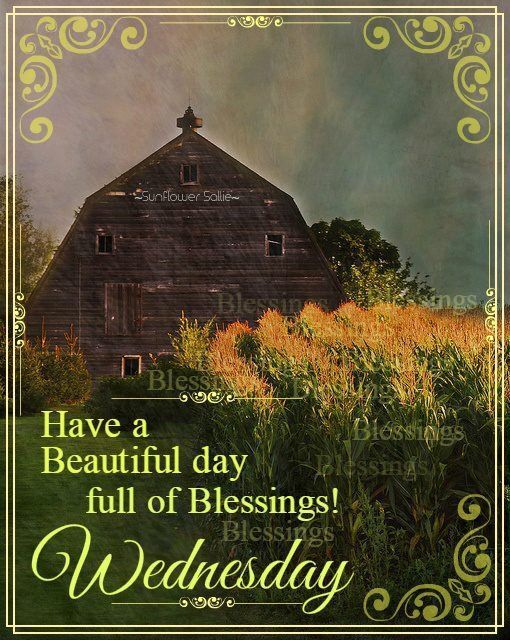 Have A Beautiful Day Full Of Blessings! Wednesday wednesday wednesday quotes wednesday blessings wednesday images wednesday quote images