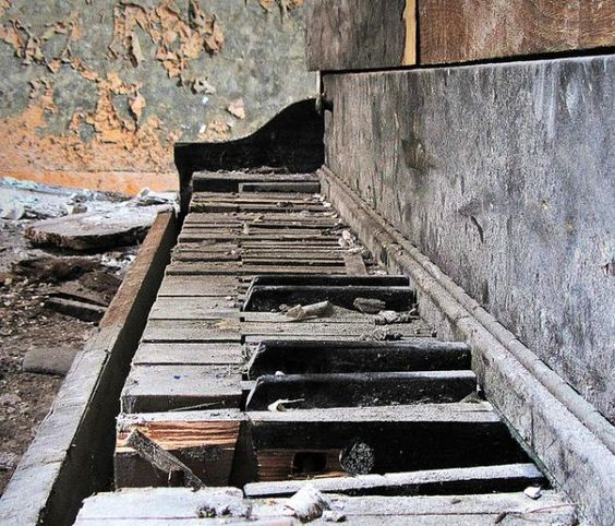 abandoned pianos.....I would adopt it... :-(