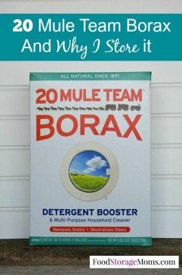 20 Mule Team Borax And Why I Store It Emergency
