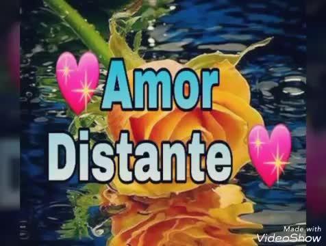 Bom Dia Amor Distante Com Imagens Mensagem De Amor Distante