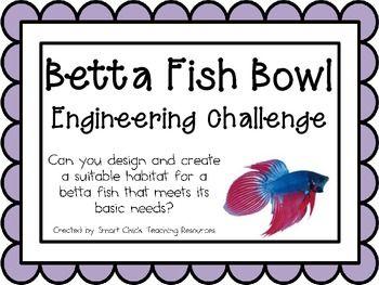 Pinterest the world s catalog of ideas for Betta fish training