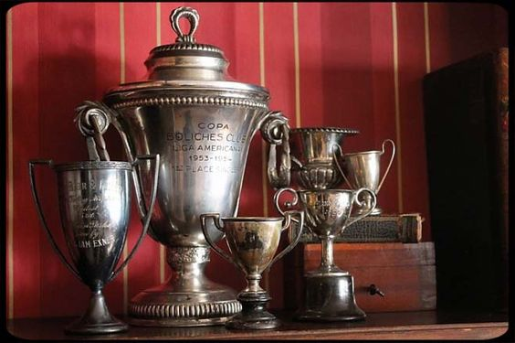 Antique trophies for @Brandi Dickerson