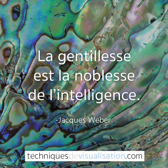 Techniques de Visualisation - Citation - Jacques Weber - La gentillesse est la noblesse de l'intelligence. #citation #inspirante #positive #gentillesse