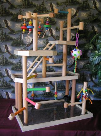 Bird Gym- screw the birds, my rats would love this