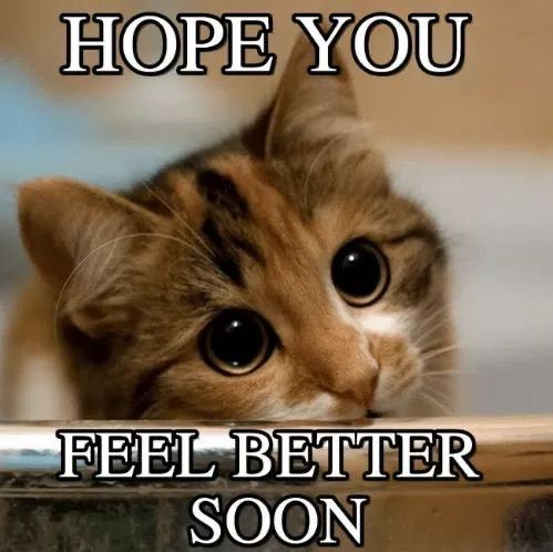 Pin By Kimbraov On Get Well Soon Images Feel Better Quotes Happy Birthday Friend Funny Feel Better