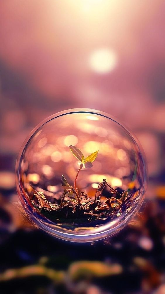 Crystal Ball Photography Ideas Photo Example Abrittonphotography Cool Wallpapers For Iphone 7 Bubbles Wallpaper Beautiful Macro Photography