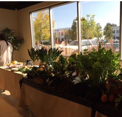 Barrys' Organic Farm